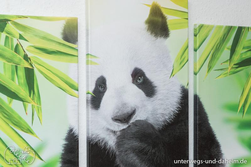 Neue Wandbilder von Bimago