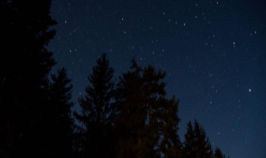 Sterne  überm großen Arbersee