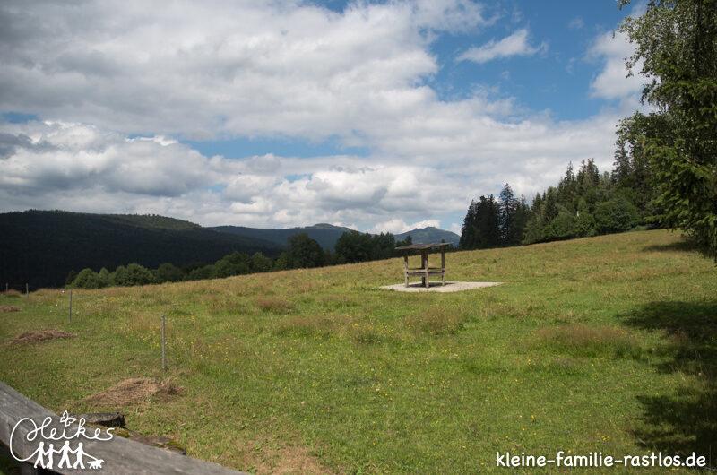 Enttäuscht im Nationalparkzentrum bayrischer Wald